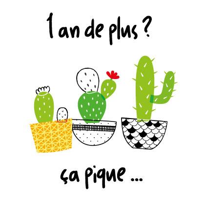 miamots-carte postale-cactus-anniversaire-