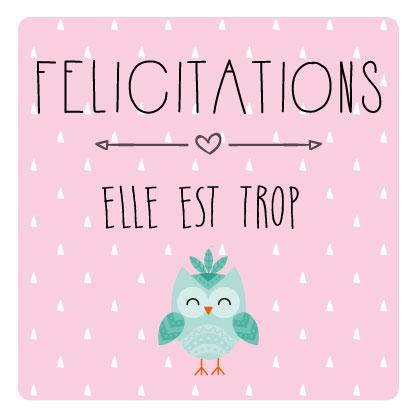 miamots-carte postale-félicitations-naissance-chouette