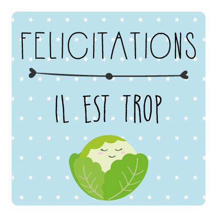 miamots-cartes postales-félicitations-naissance-chou